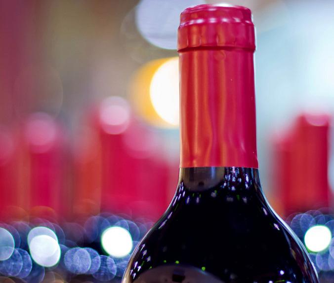 Vinhos Ultra Premiums Chilenos