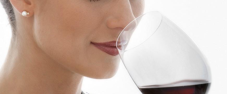 Aprenda a falar de Vinhos corretamente