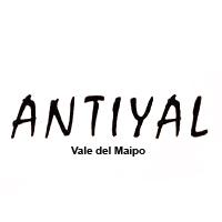 Untitled-1_0026_Antiyal