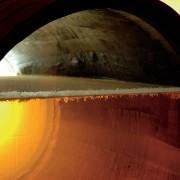 Nova levedura vai produzir vinhos menos alcoólicos