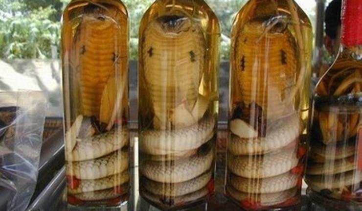 Garrafas de vinho de cobra