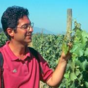 Jean-Michel Boursiquot na vinícola Carmen, ano 1994