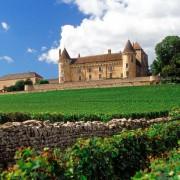Vinhos da bourgogne