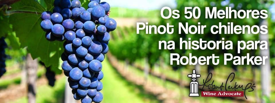 50 Melhores Pinot Noir chilenos na historia para Robert Parker