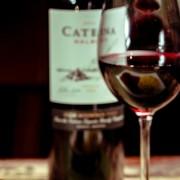 Analisis sensorail e potencial de guarda dos vinhos produzidos com a uva Malbec