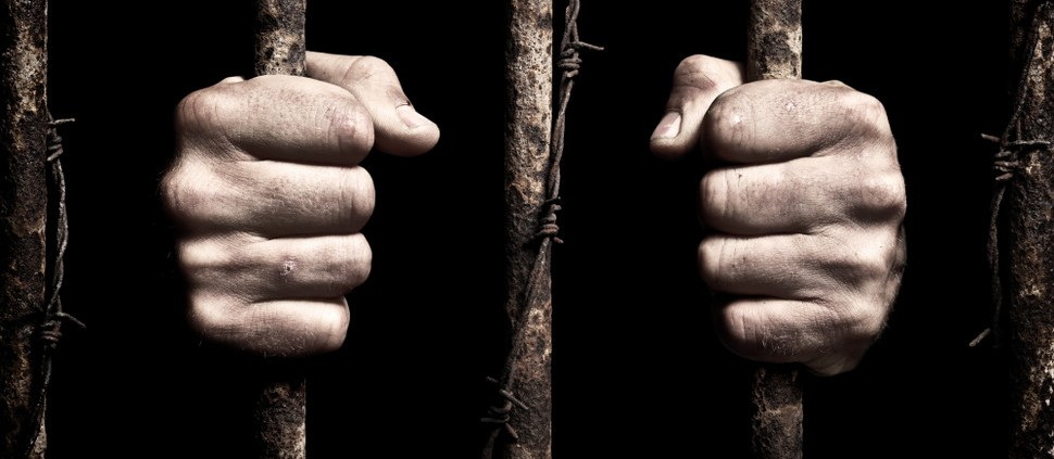 Bordeaux julga gangue acusada de roubar vinhos