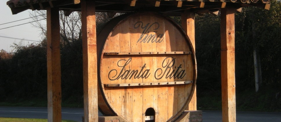 Chilena Santa Rita investe na Irlanda