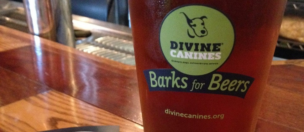 Happy hour com cerveja para cachorro nenhum botar defeito