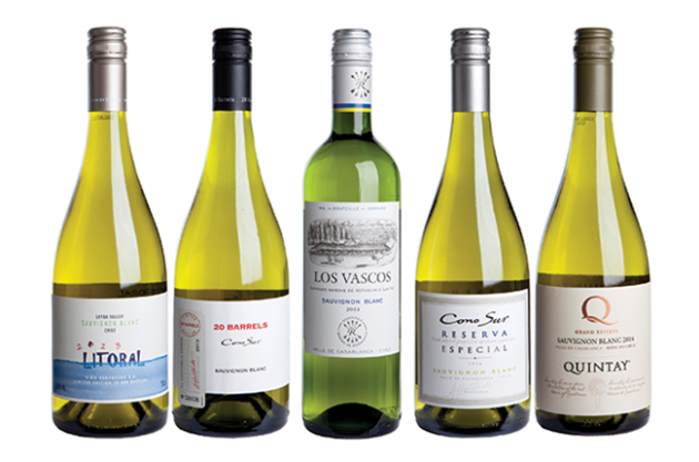 5 Grandes vinhos Sauvignon Blanc do Chile segundo revista inglesa Decanter