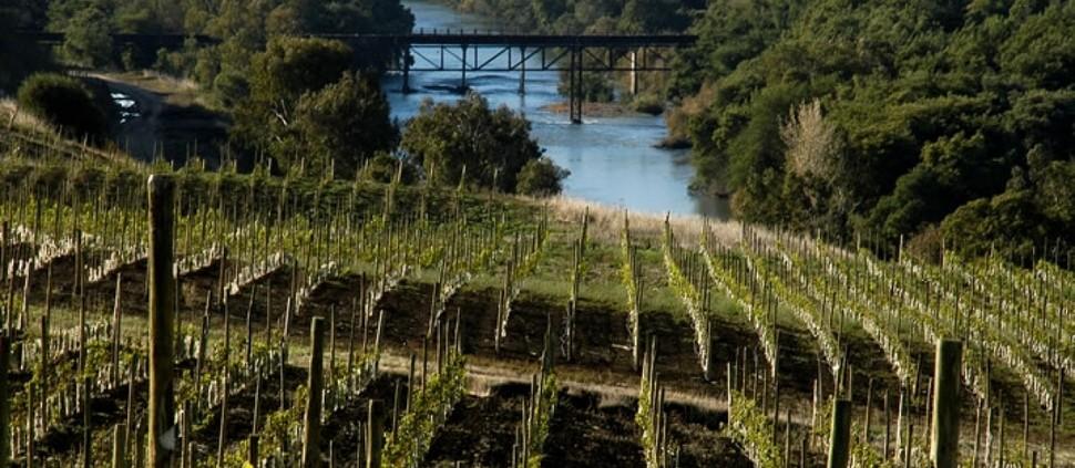 O extremo sul do vinho chileno