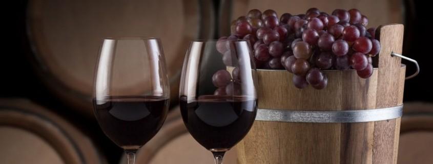 O papel da uva na qualidade do vinho