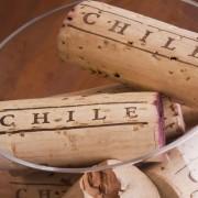 Chile Seus vinhos, terroirs e gastronomia
