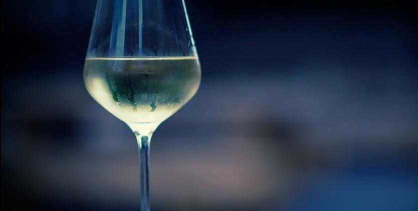 Sauvignon Blanc jovens, frescos e concentrados