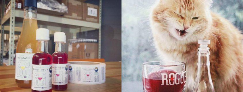 Conheça o vinho para cachorros e gatos