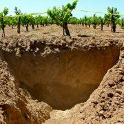 Diferentes tipos de solos do mundo