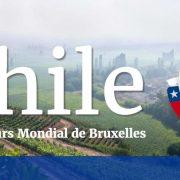 Vinhos ganhadores de medalhas no Concours Mondial de Bruxelles Chile 2017