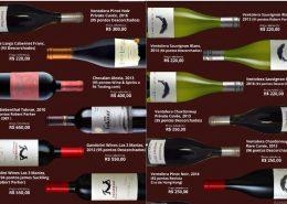 Chilean Premium Wines e vertical de Ventolera SB e Gandolini Las Tres Marias