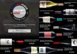 Chilean Premium Wines – Tasting Tour