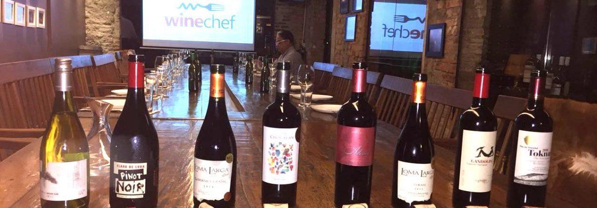 Chilean Premium Wine - Tastin Tour em Belo Horizonte.