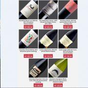 Chilean Premium Wines - Minas Gerais - Tasting Tour
