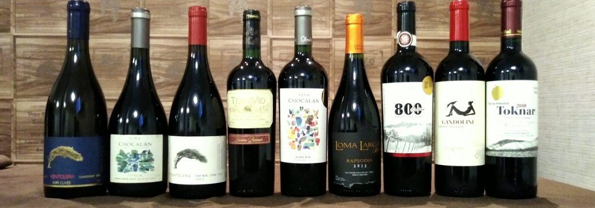 Chilean Premium Wines - Tasting Tour em Vitoria