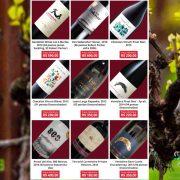 Chilean Premium Wines - Tasting Tour em Vitória ES