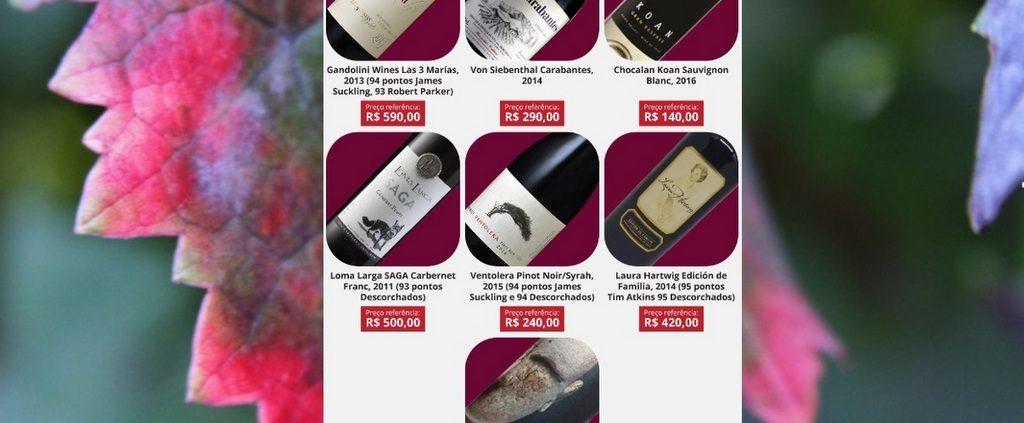 Chilean Premium Wines Minas Gerais - Tasting Tour