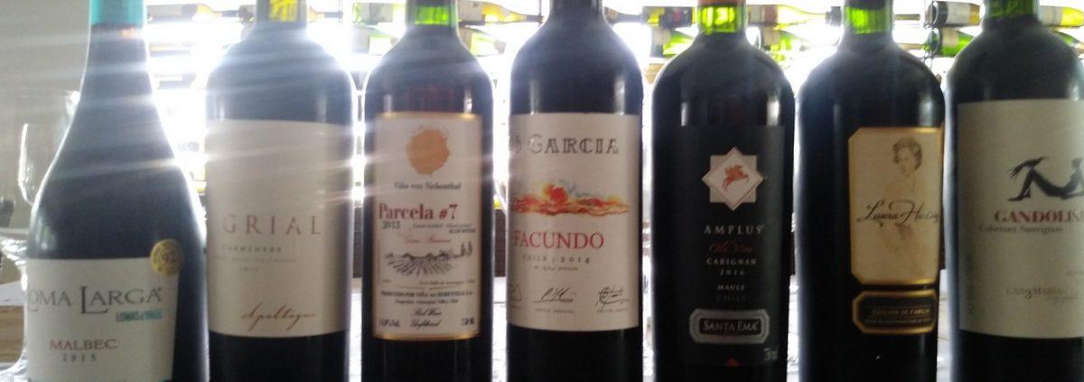 Profissionais de Brasília participaram do Projeto da Winechef