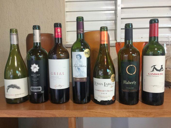 Vinhos Ícones dos Andes