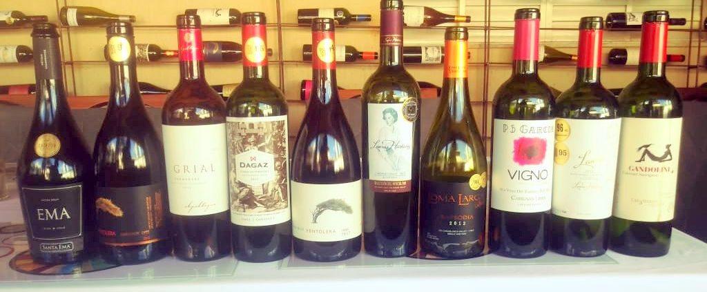 Chilean Premium Wine